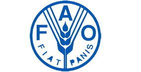 FAO United Nations